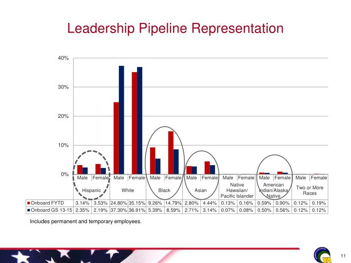 Leadership Pipeline Representation