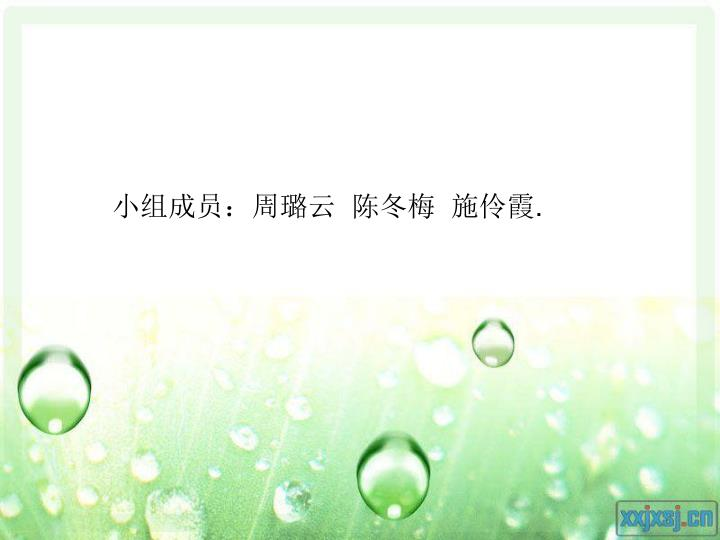 小组成员:周璐云  陈冬梅  施伶霞
