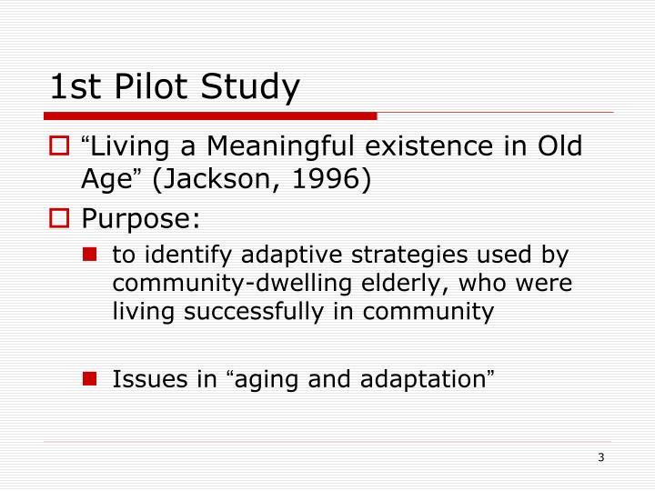 1st Pilot Study