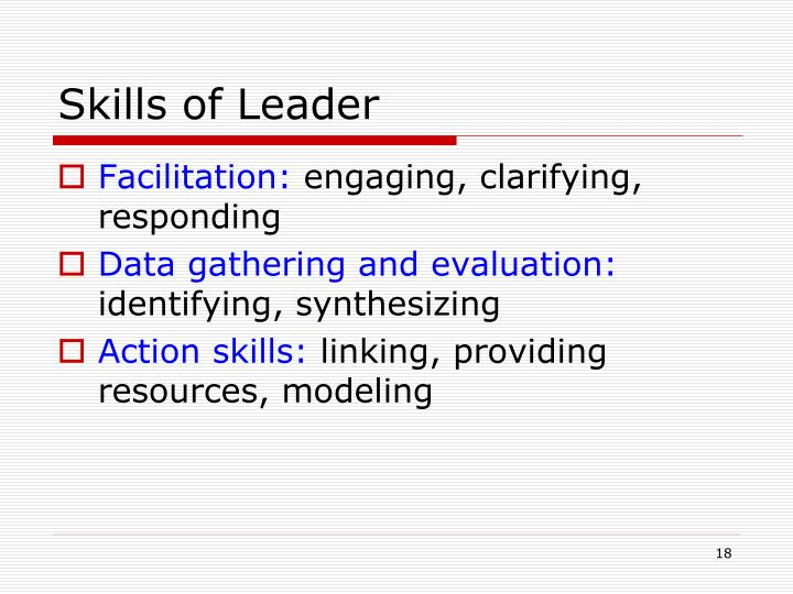 Skills of Leader