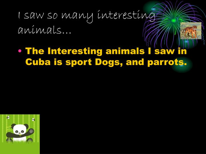 I saw so many interesting animals…