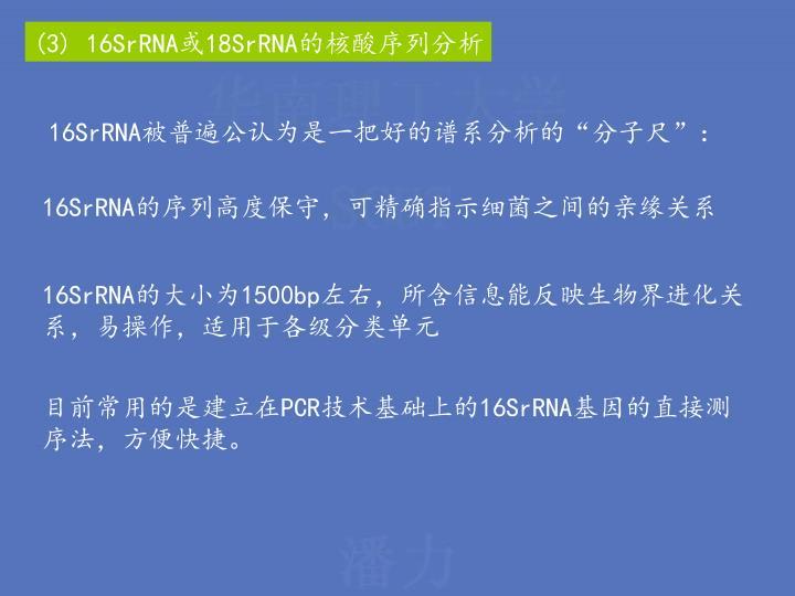 (3) 16SrRNA