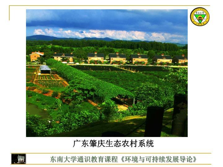 广东肇庆生态农村系统