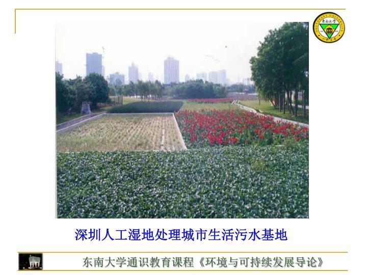 深圳人工湿地处理城市生活污水基地