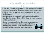 a partnership for protection