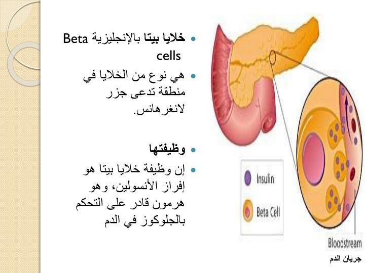 خلايا بيتا
