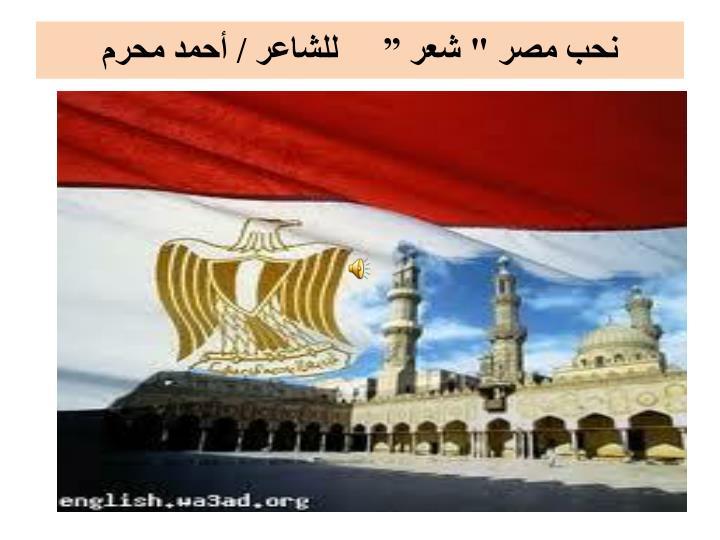 """نحب مصر """" شعر """"     للشاعر / أحمد محرم"""
