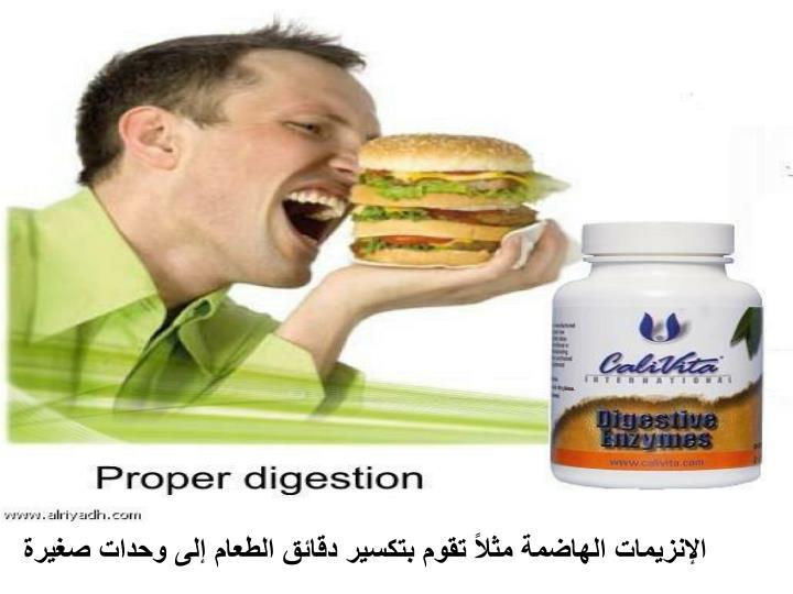 الإنزيمات الهاضمة مثلاً تقوم بتكسير دقائق الطعام إلى وحدات صغيرة