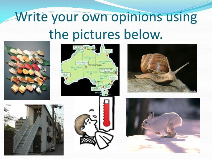 Write your own opinions using the pictures below.