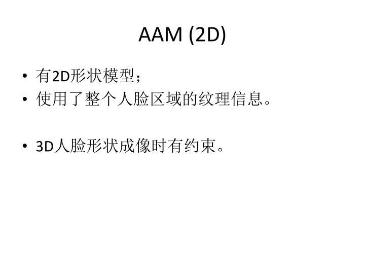 AAM (2D)