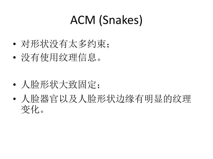 ACM (Snakes)