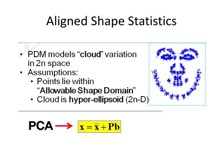 Aligned Shape Statistics