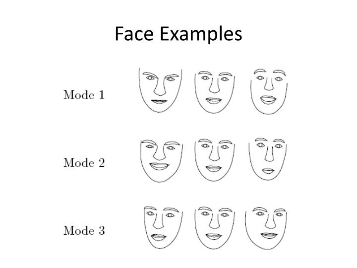 Face Examples