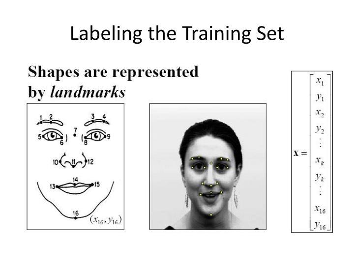 Labeling the Training Set