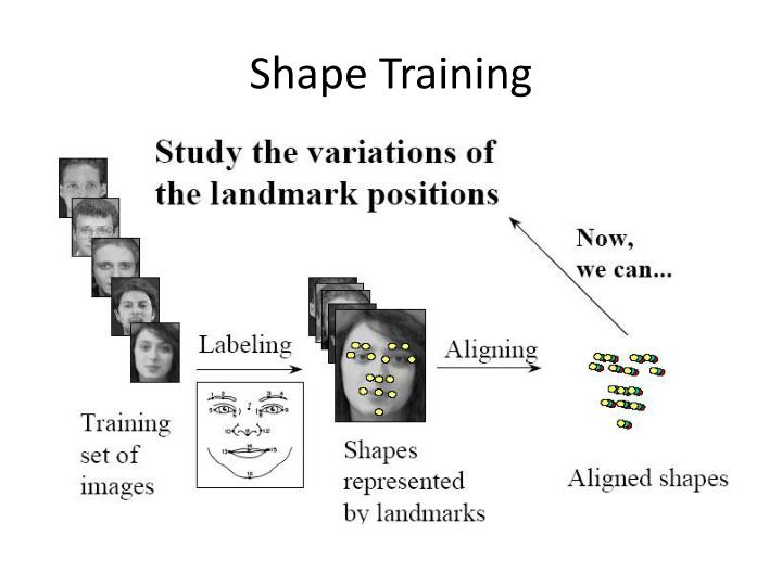 Shape Training