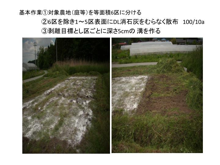 基本作業①対象農地(庭等)を等面積