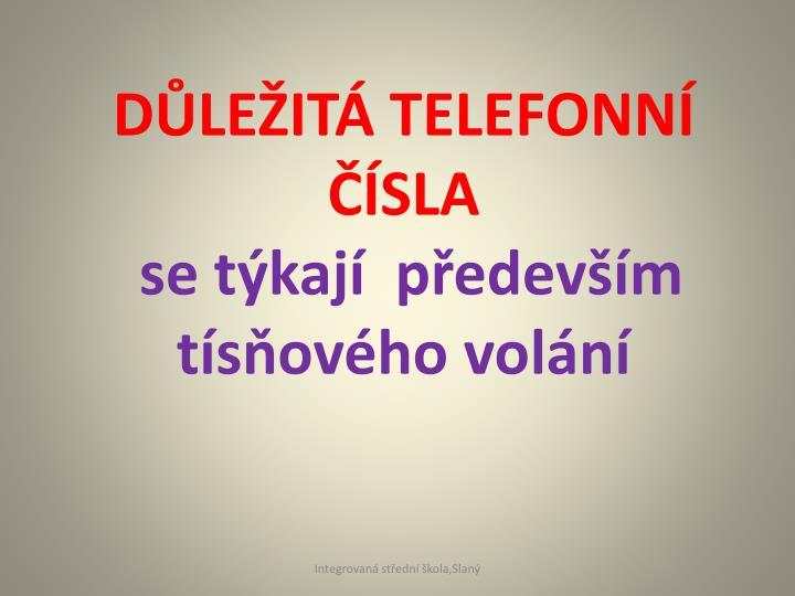 DLEIT TELEFONN SLA