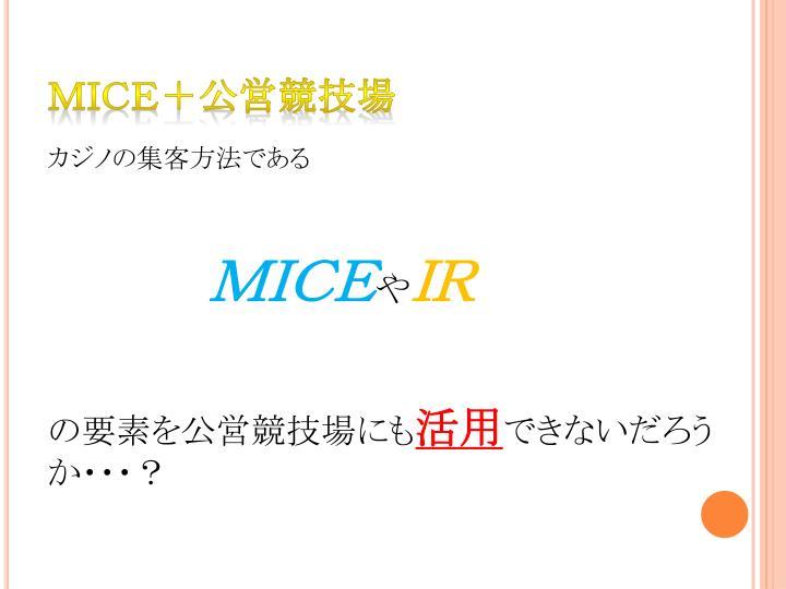 MICE+公営競技場