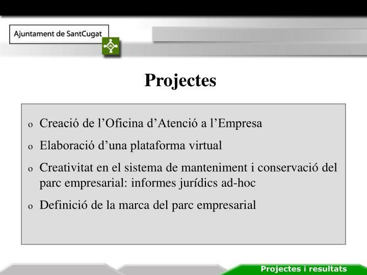 Projectes