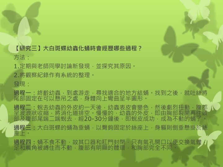 【研究三】大白斑蝶幼蟲化蛹時會經歷哪些過程?