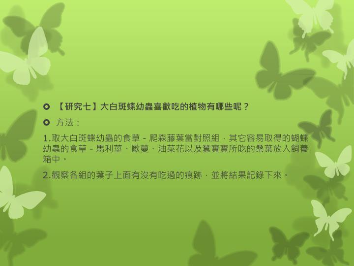 【研究七】大白斑蝶幼蟲喜歡吃的植物有哪些呢?