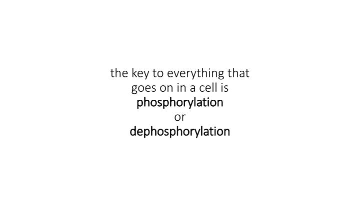 the key to everything that