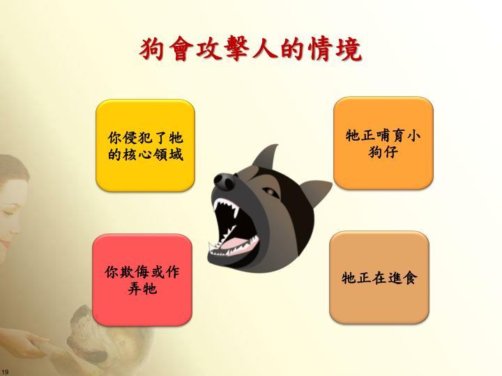狗會攻擊人的情境