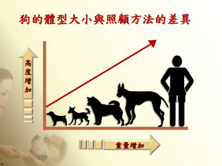 狗的體型大小與照顧方法的差異