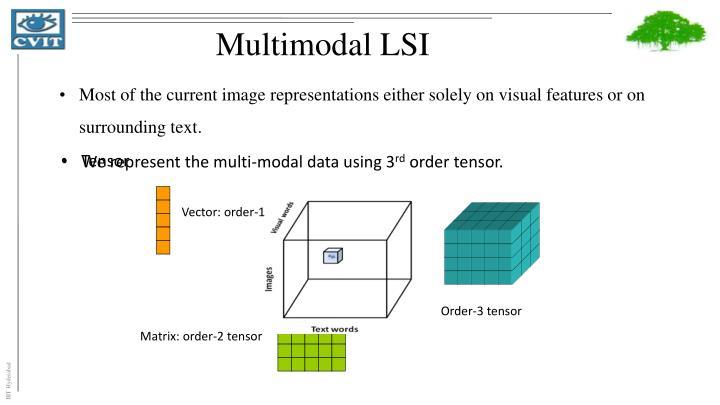 Multimodal LSI