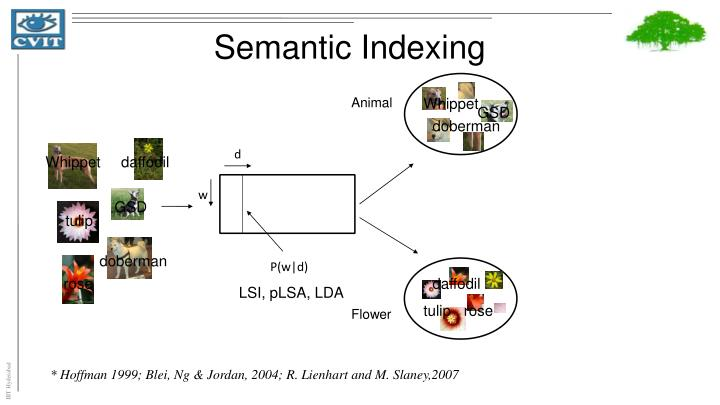 Semantic Indexing
