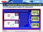 2 polymorphism of ralstonia solanacearum rs3