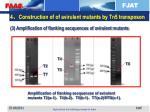 4 construction of of avirulent mutants by tn5 transposon1