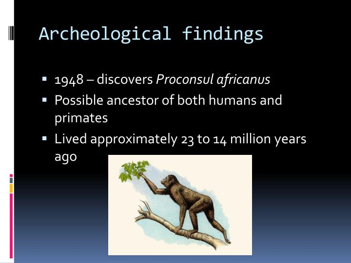 Archeological findings