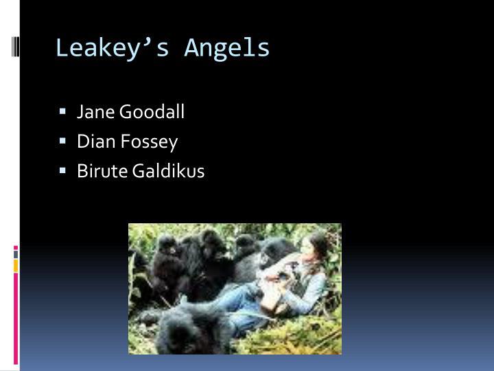 Leakey's Angels