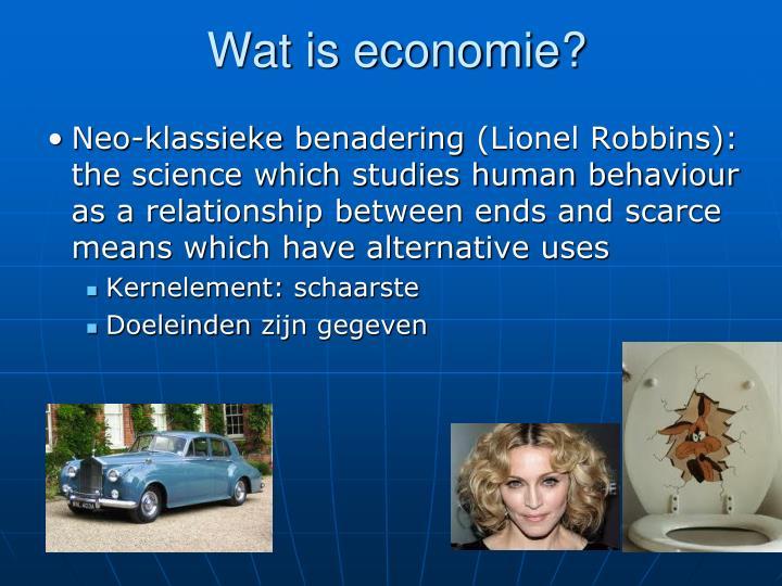 Wat is economie?