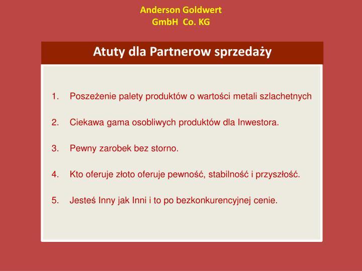 Anderson Goldwert