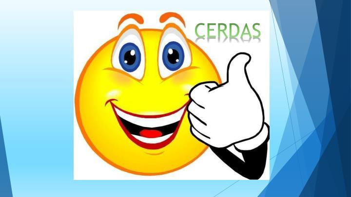 CERDAS
