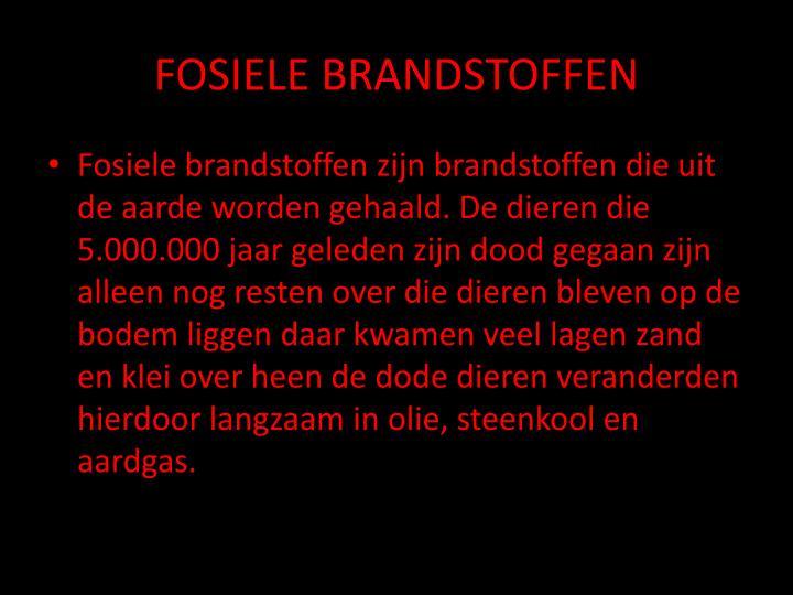 FOSIELE BRANDSTOFFEN