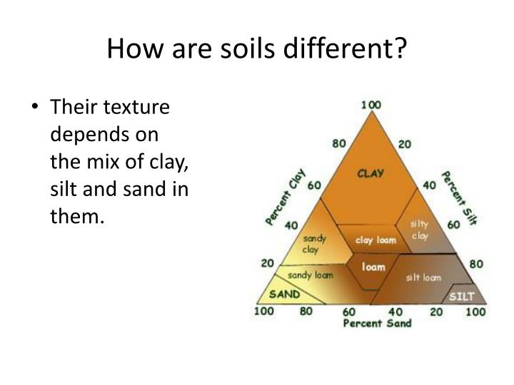 How are soils different?