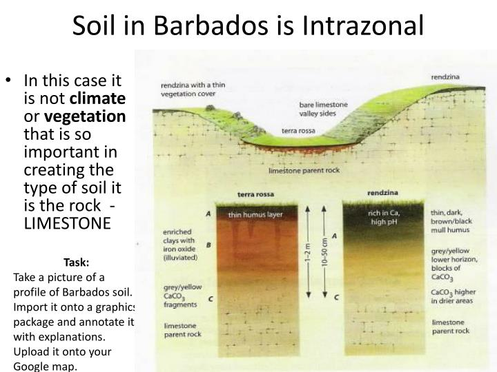Soil in Barbados is