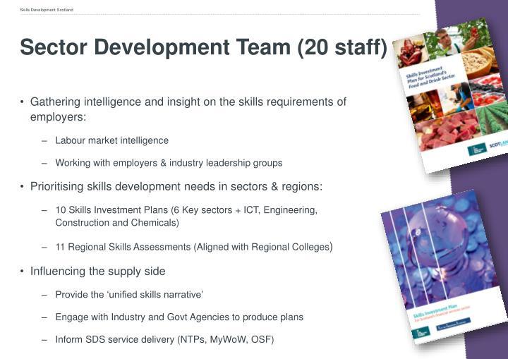 Sector Development Team (20 staff)