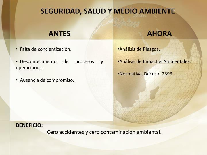 SEGURIDAD, SALUD Y MEDIO AMBIENTE
