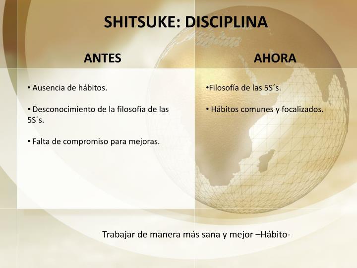 SHITSUKE: DISCIPLINA