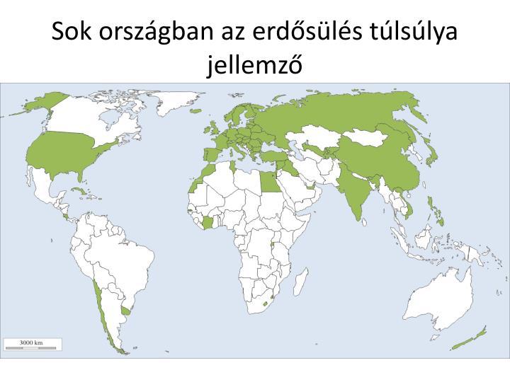 Sok országban az erdősülés túlsúlya jellemző