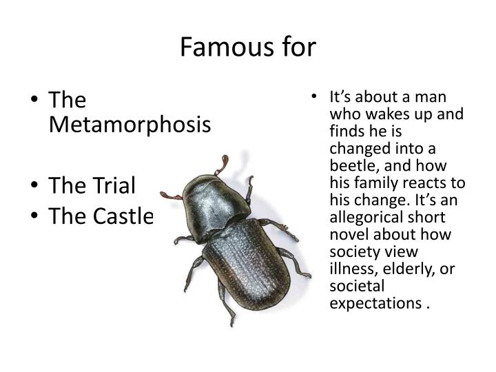 the reality of change in the metamorphosis by franz kafka Dream and reality in the metamorphosis  man (probably kafka himself) and a  well-meaning giant insect, where the former is trying  insect is gregor, which is  one device of refusing to acknowledge any real change in him  tagged with:  cambridge companion kafkafranz kafka metamorphosisgregor.