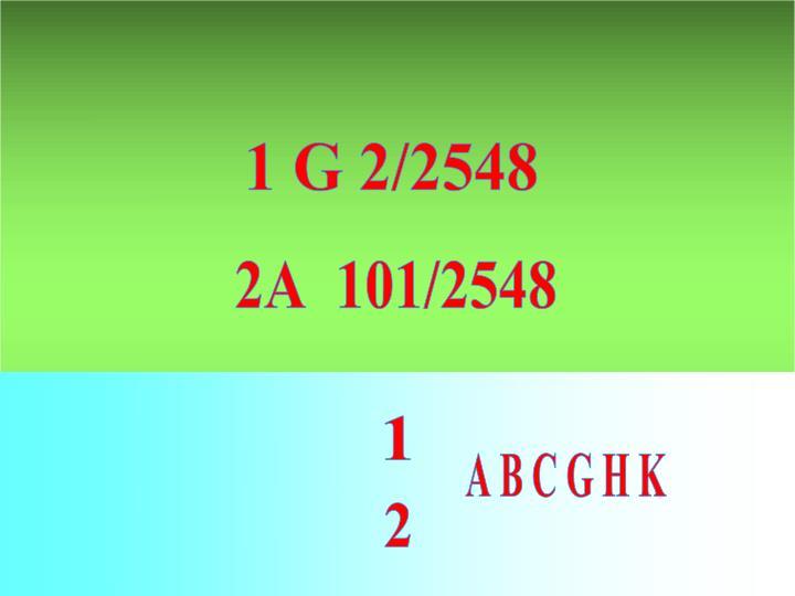 1 G 2/2548