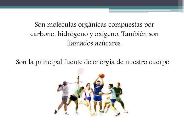 Son moléculas orgánicas compuestas por