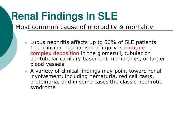 Renal Findings In SLE