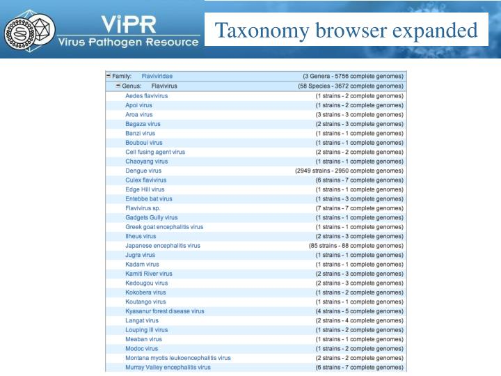 Taxonomy browser expanded