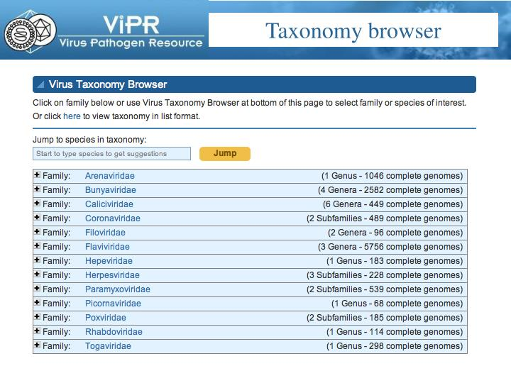 Taxonomy browser